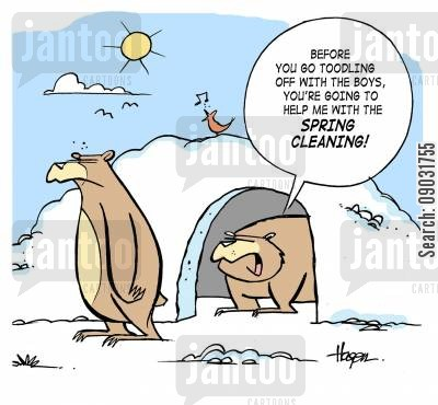 Best Way To Clean Up Dog Poop After Winter