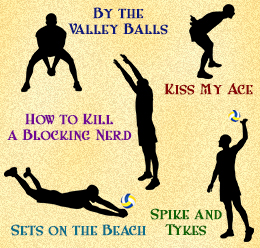 Sexual Volleyball Team Names
